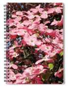Beautiful Nature Spiral Notebook