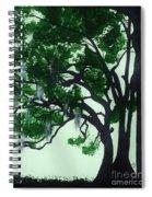 Beautiful Oak Trees Spiral Notebook