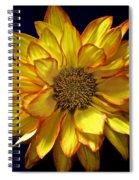 Beautiful Petals Spiral Notebook