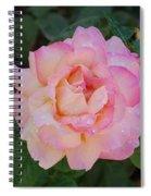 Beautiful Pink Rose Spiral Notebook
