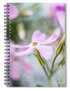 Beautiful Pink Spring Flowers Spiral Notebook