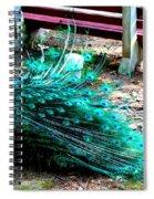 Beautiful Plummage Spiral Notebook