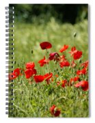 Beautiful Poppies 1 Spiral Notebook