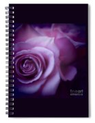 Beautiful Purple Roses Spiral Notebook