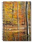 Beautiful Spiral Notebook