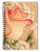 Beautiful Rose Spiral Notebook