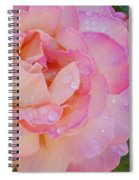 Beautiful Rose Spiral Notebook