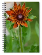 Beautiful Shades Of Brown  Spiral Notebook