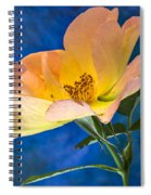 Beautiful Single Rose Spiral Notebook