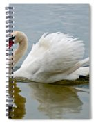 Beautiful Swan Spiral Notebook