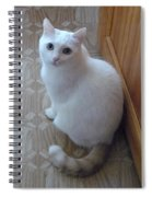 Beautiful Tail Spiral Notebook