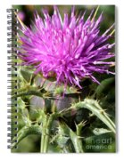 Beautiful Thistle Spiral Notebook