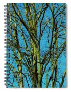 Beautiful Turquoise Sky Spiral Notebook