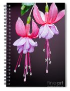 Beautiful Two Spiral Notebook