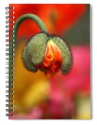 Beautiful Ugly Spiral Notebook