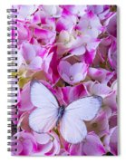 Beautiful White Butterfly Spiral Notebook