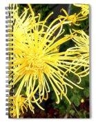 Beautiful Yellow Flower Spiral Notebook