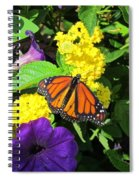 Beauty All Around Spiral Notebook
