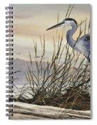 Beauty Along The Shore Spiral Notebook