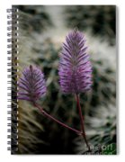 Beauty Among Thorns Spiral Notebook