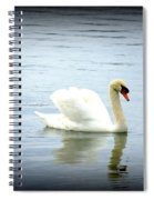 Beauty And Elegance Spiral Notebook