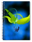 Beauty And Grace 1 Spiral Notebook