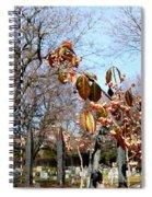 Beauty And Sadness Spiral Notebook