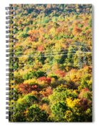 Beauty And The Grid Spiral Notebook