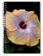 Beauty Before Age Spiral Notebook