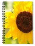 Beauty Beheld - Sunflower Spiral Notebook