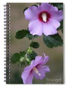 Beauty Doubles Spiral Notebook