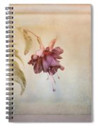 Beauty Fades Softly Framed Spiral Notebook