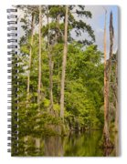 Beauty In A Swamp Spiral Notebook