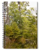 Beauty In  A Swamp Ll Spiral Notebook