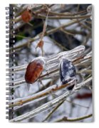 Beauty In Ice Spiral Notebook
