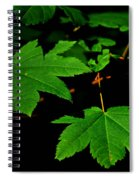 Beauty In Nature Spiral Notebook