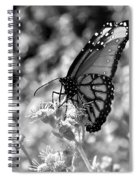 Butterfly Beauty In Nature Spiral Notebook