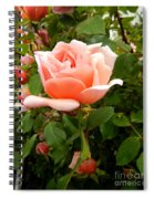Beauty In Pink Spiral Notebook