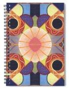 Beauty In Symmetry 4 - The Joy Of Design X X Arrangement Spiral Notebook
