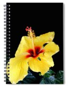 Beauty In The Natural Spiral Notebook