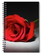 Beauty In The Spotlight Spiral Notebook