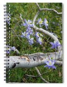Beauty In The Wild Spiral Notebook