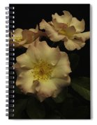 Beauty In Three Spiral Notebook