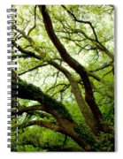 Beauty In Time Spiral Notebook