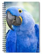 Beauty Is An Enchanted Soul Spiral Notebook
