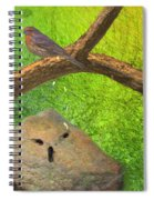 Beauty Is In The Belief Of The Beholder Spiral Notebook