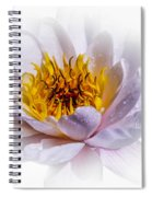 Beauty Lies Within Spiral Notebook