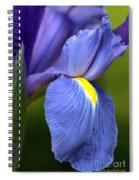 Beauty Of Iris Spiral Notebook