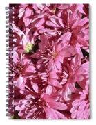 Beauty Of Pink Spiral Notebook