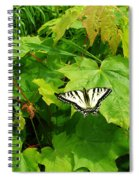 Beauty Of Summer Spiral Notebook